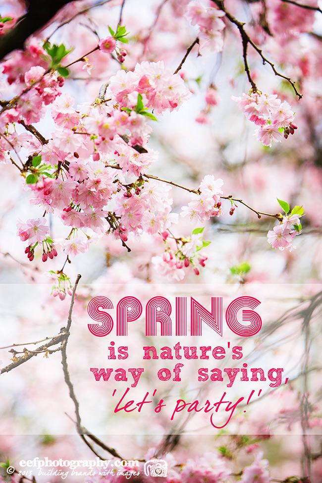 Inspiratie quote, spring is natures way of saying let's party!