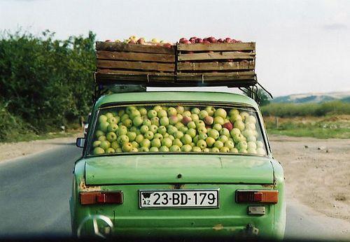 eefphotography | Blog | #herfst #fall #apples
