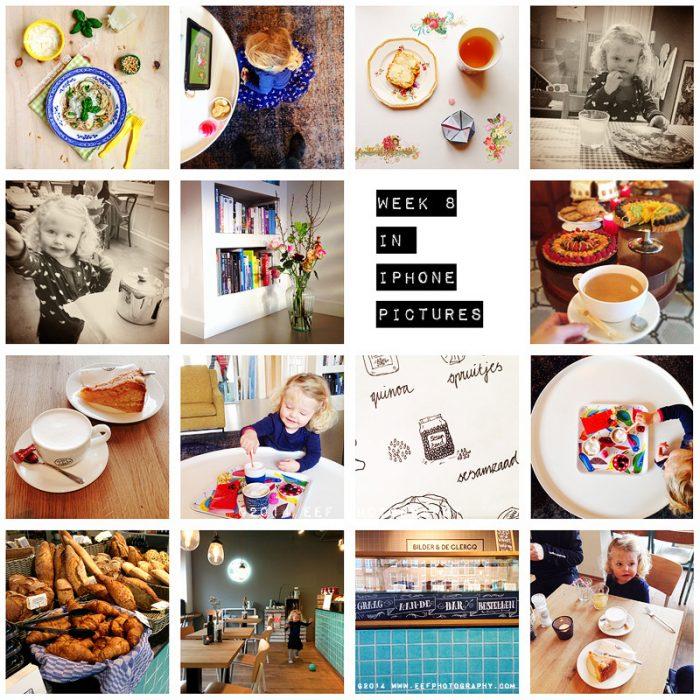 eefphotography.com | blog | week 8 iphone pictures