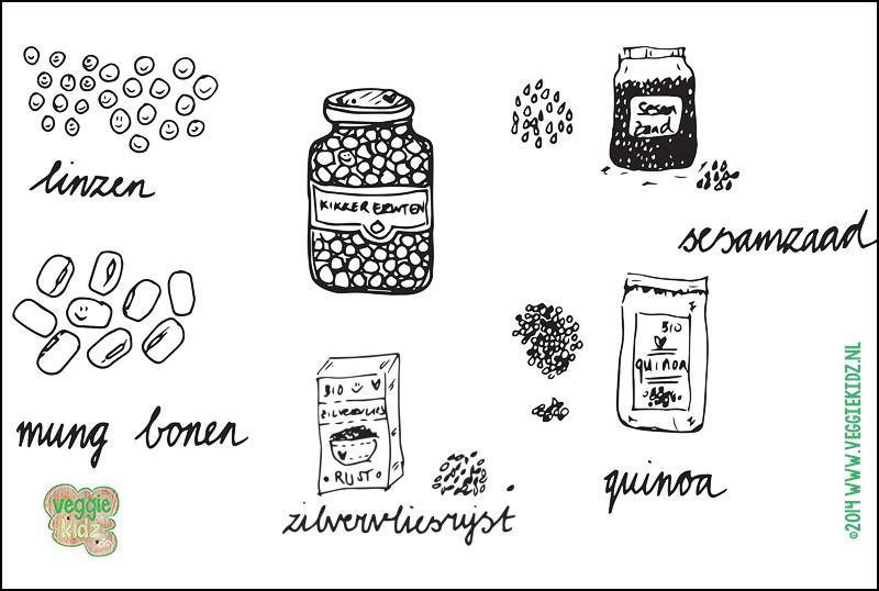 Veggie Kidz | Wat zijn belangrijke combinaties van voedingsmiddelen voor vegetariers?#veggiekdiz #compleeteiwit