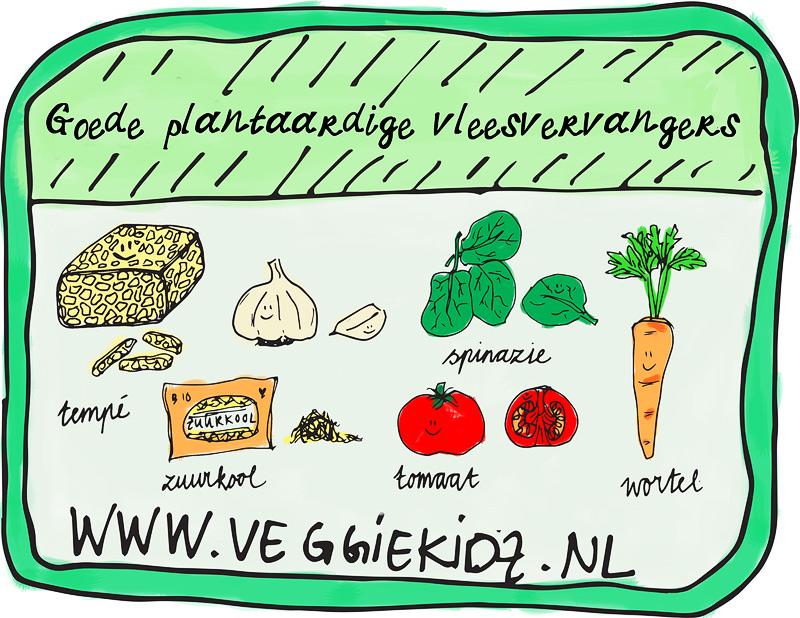 Wat zijn goede plantaardige vleesvervangers?