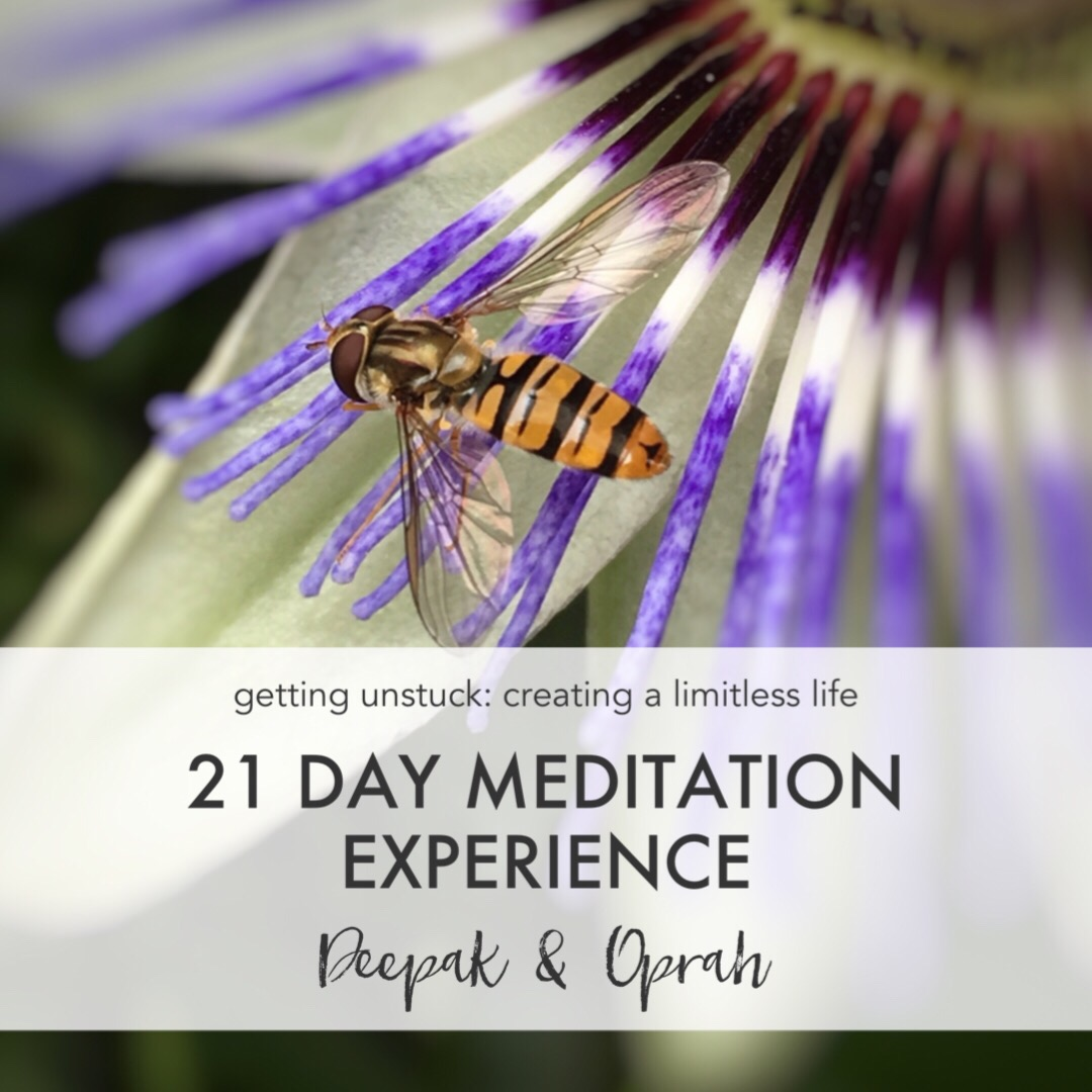 21 days meditation experience